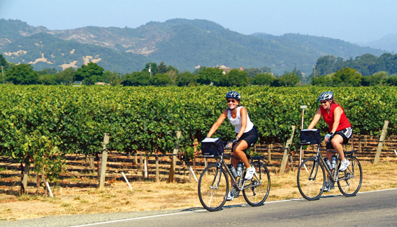 Wine Country Biking